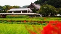 明日香村のおすすめ観光スポット!奈良の歴史ある名所や人気グルメも