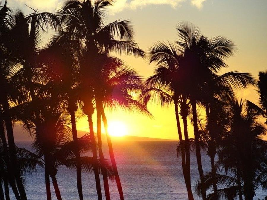 ハワイでおすすめのディナーレストラン!人気店やステーキハウスも紹介