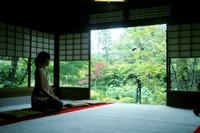妙心寺(京都)の御朱印・御朱印帳は種類が豊富!拝受できる場所・時間も紹介