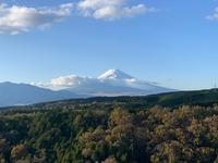 静岡観光の穴場スポット!絶景や自然あふれるおすすめの場所を紹介