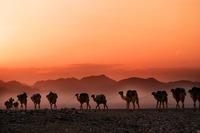 ダナキル砂漠は世界一過酷な地!ツアーの見どころや行き方などを紹介