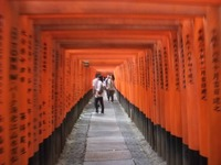 旭川神社は人気のパワースポット!見どころやご利益など紹介
