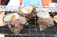 木更津で浜焼き!貝食べ放題・房総半島の海鮮バーベキューの店も紹介