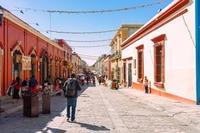 オアハカ【メキシコ】のおすすめ観光スポット!お土産やグルメも紹介