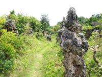 パーントゥプナハは宮古島(沖縄)の泥祭り!神様との行事を紹介