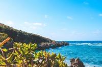 キジムナーとは?沖縄の伝説の精霊が目撃できるスポットを紹介