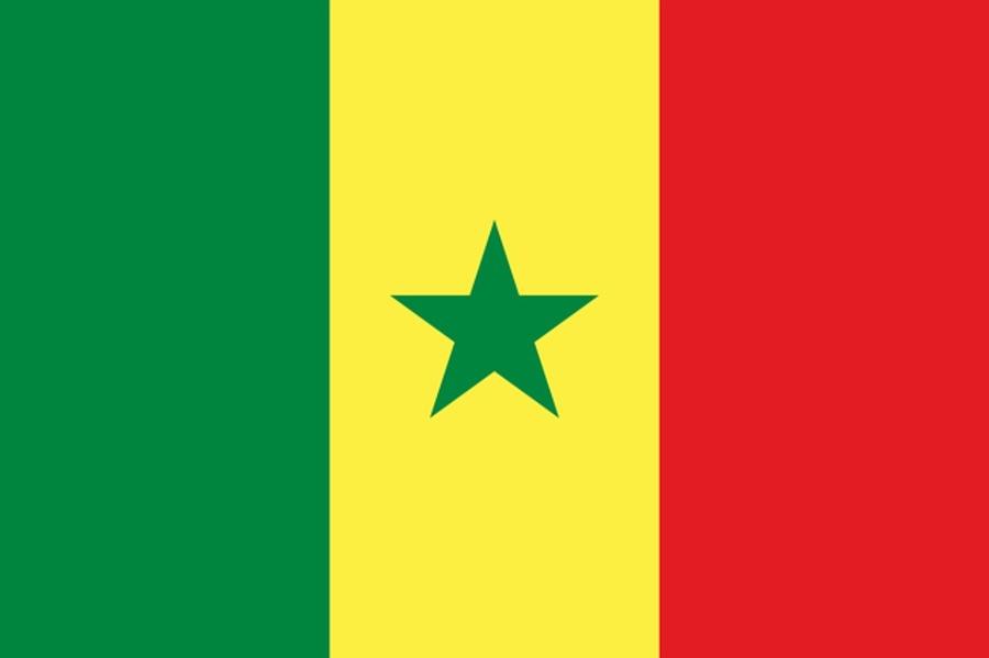 セネガルの治安は良い?安全?観光や旅行での危険度や注意点も紹介