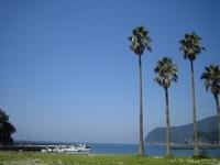 伊豆の観光デートスポット!カップルにおすすめの旅行地を紹介