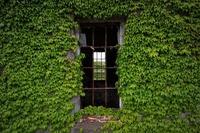 終わらない葬式の家とは?茨城にある場所や由来・遺影の真相を紹介
