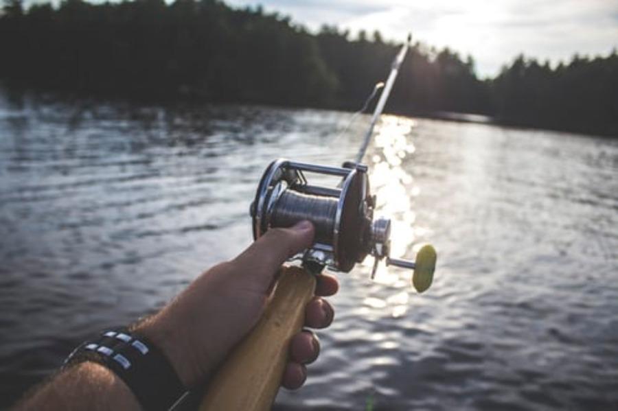 平塚新港の釣果・釣りポイント情報!サビキ・夜釣りや駐車場も紹介