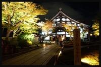 京都の夜観光!夜間拝観可能な神社・お寺やおすすめの遊ぶところを紹介