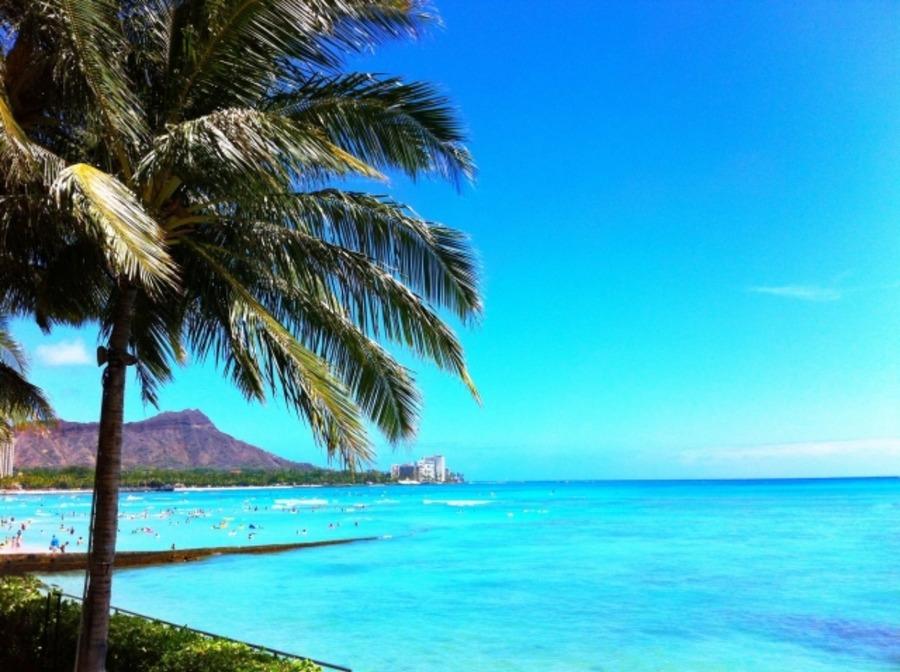 【ハワイ】ワイキキでおすすめの観光スポット!定番・ビーチ・ホテルを紹介