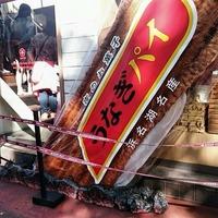 浜松駅のお土産!人気のうなぎパイなどエキナカのおすすめ商品を紹介