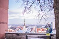 エストニアは美人な女性が多い?エストニア美女の特徴も紹介