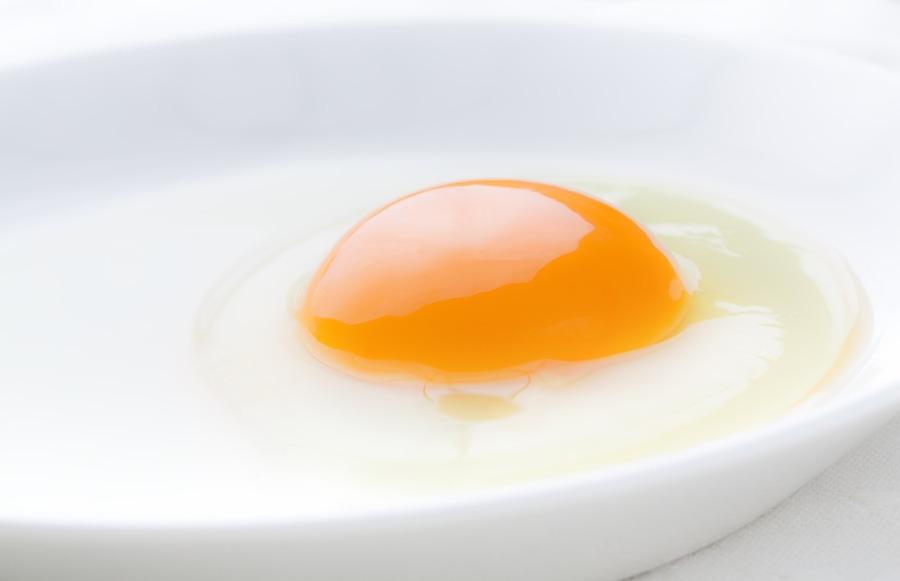 全国の卵かけご飯専門店!おすすめのお店から人気店まで紹介