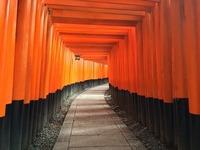 神徳稲荷神社はガラスの鳥居がある神社!御朱印やお守りも紹介