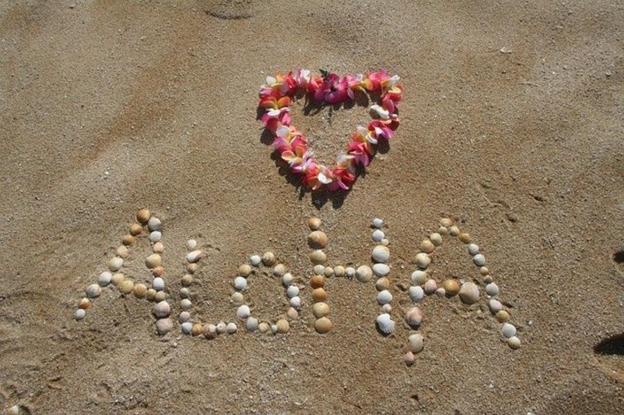 ハワイの11月の気温・服装は?おすすめのイベント・セール情報も