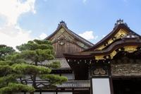 二条城(京都)の見どころ!特徴・歴史などのポイントも簡単に紹介