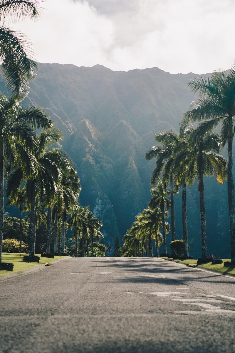 【ハワイ】ワイキキのおすすめ観光スポット!人気・インスタ映え・グルメを紹介!