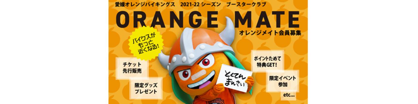愛媛オレンジバイキングス