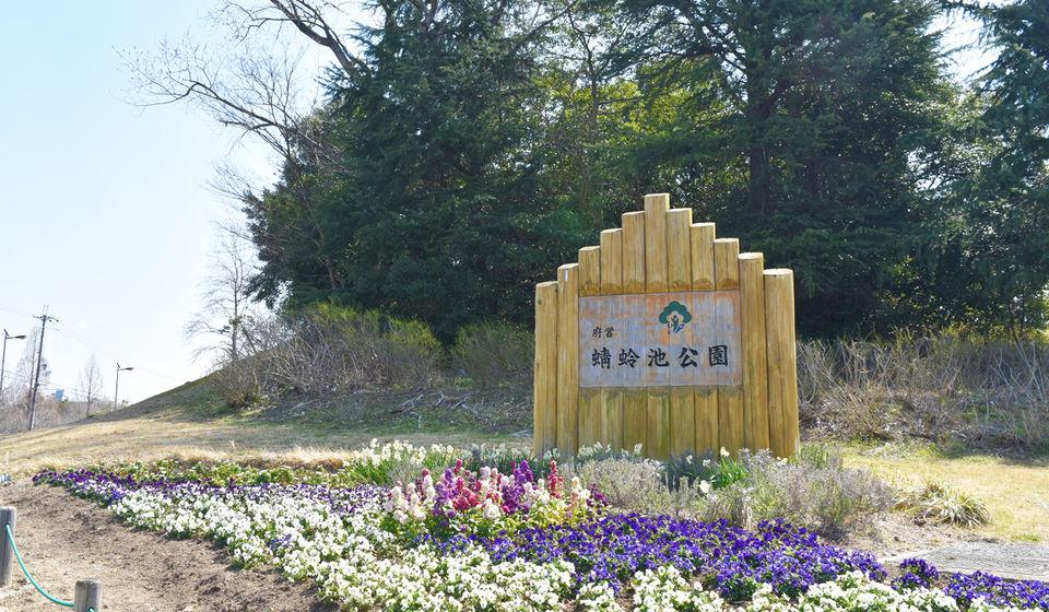 ダンス練習は大阪・蜻蛉池公園がおすすめ!2つの理由・注意点を解説!