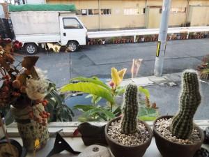 窓の外に見えるのは美穂さんの愛車のトラックです