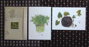 大和伝統野菜3