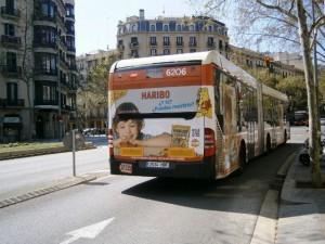 市内を網の目のように走る市バス