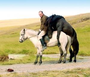 メイン写真:馬々と人間たち(C)Hrossabrestur2013