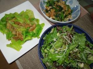 寺町野菜11