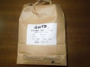 寺町野菜9