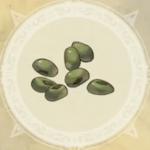 植物の種アイコン