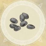 石の種アイコン