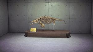 オフタモサウルス