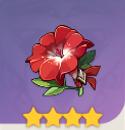 武人の赤い花