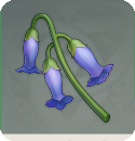 Violetgrass