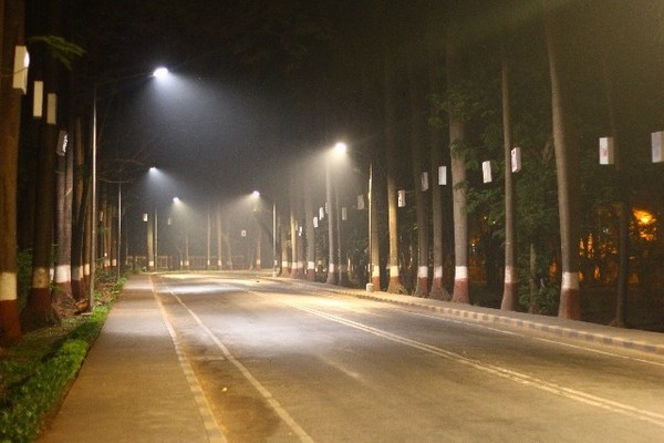 要介護のきっかけにもなる交通事故。多いのは夕方から夜!反射板のすすめ