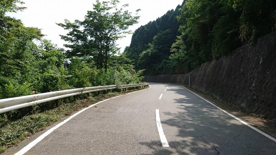 分岐を長尾峠方面へ向かうとこんな道が。