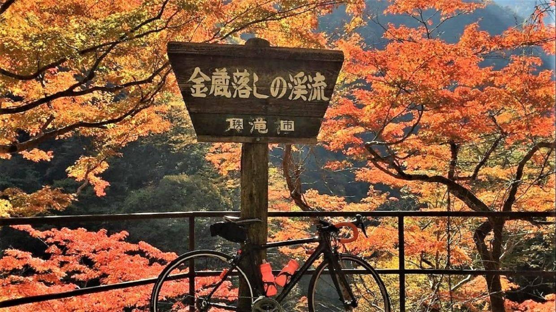 紅葉 ロードバイク 関東 おすすめスポット