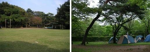 智光山公園キャンプ場(狭山市)