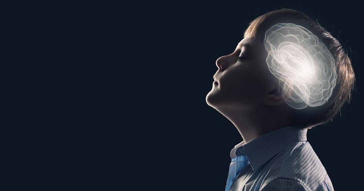 運動と脳の関係性2