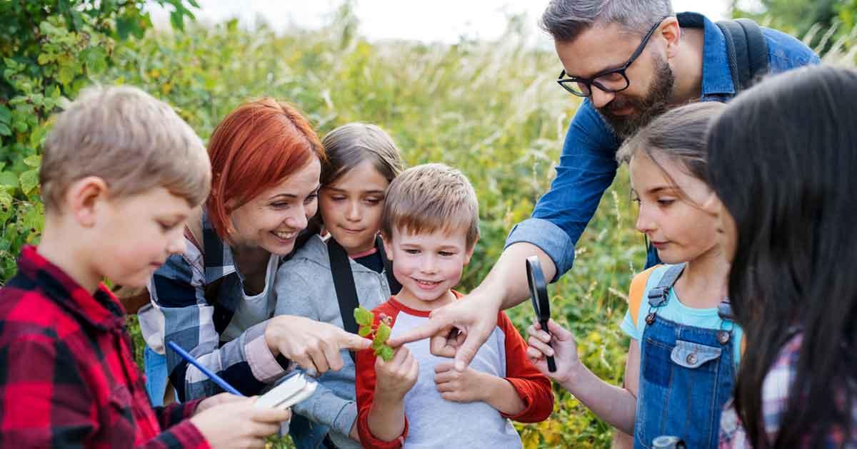 自然体験教室に参加すれば、気軽に自然体験できる。