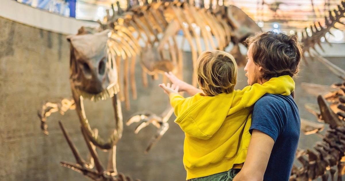 文化施設に行くと学力が上がる!「博物館・科学館」での調べ学習を成功させる秘訣【小学生の自由研究】