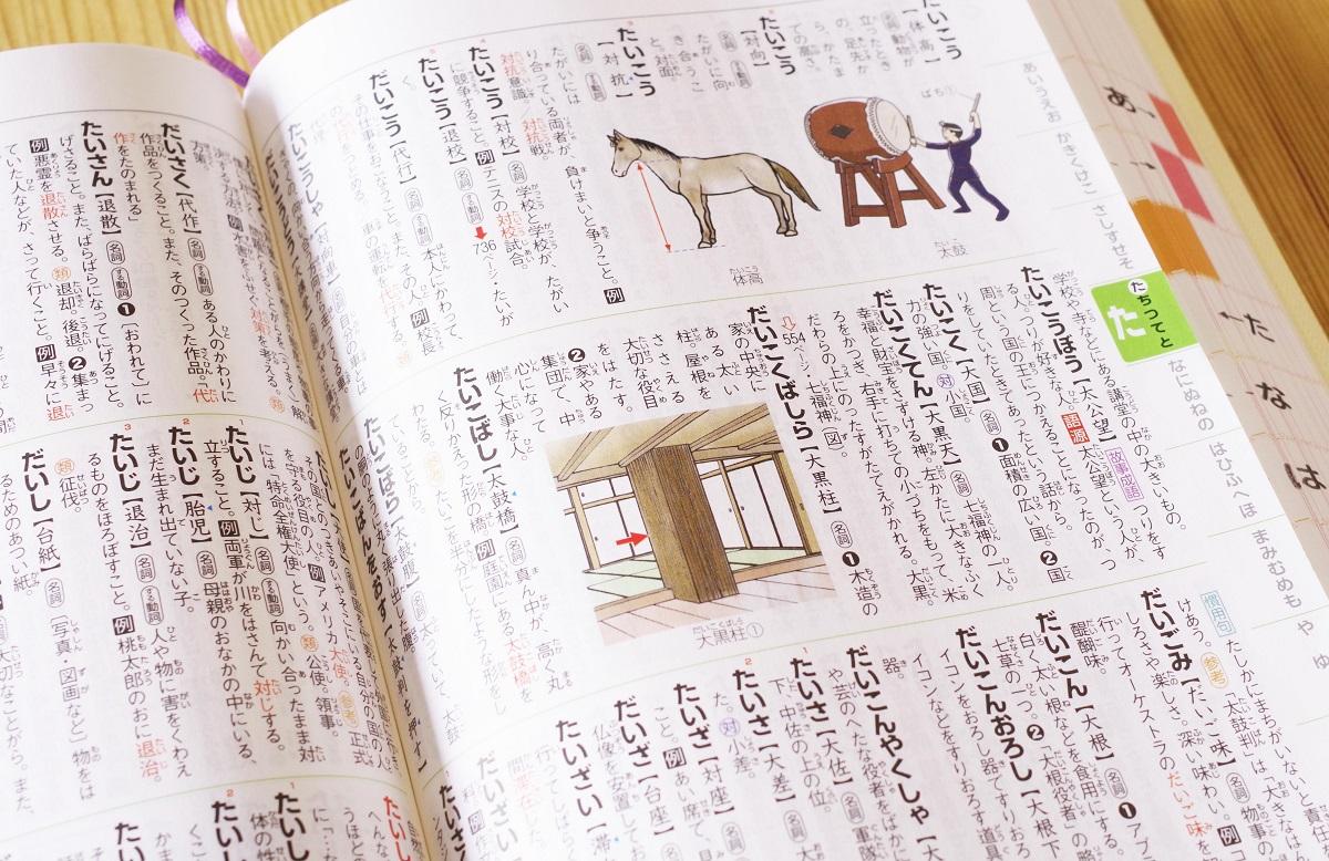 語彙力と読解力を伸ばす国語辞典の魅力と活用法2