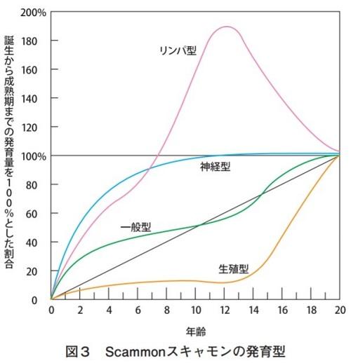スキャモンの発育型