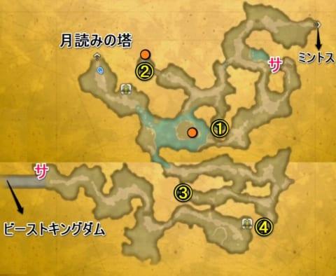 月夜の森宝箱マップ
