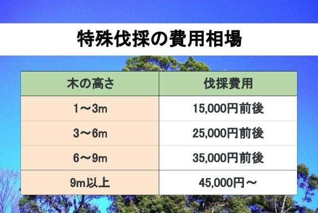 特殊伐採の費用相場