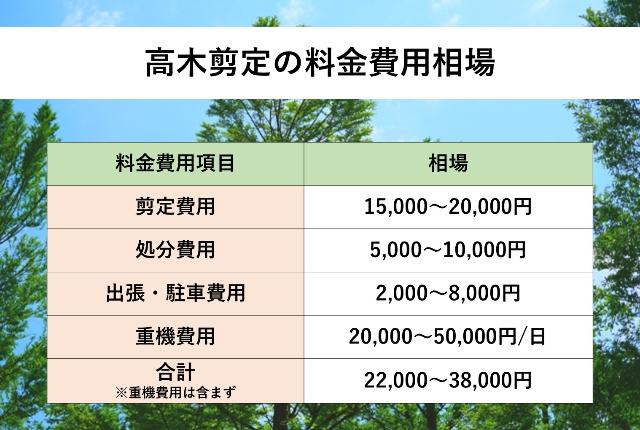 高木剪定の料金費用相場表