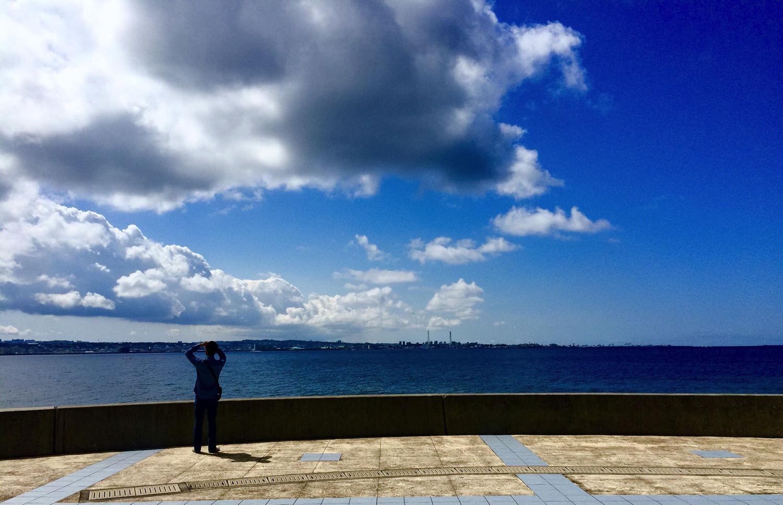 宮城海岸(砂辺)2