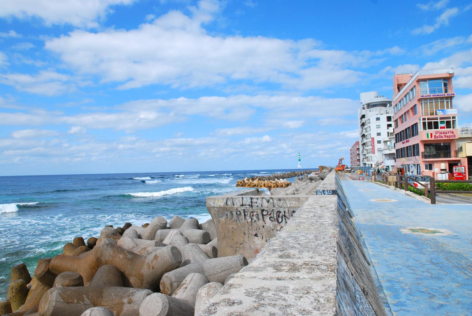 宮城海岸(砂辺)1